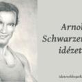 Arnold Schwarzenegger idézetek
