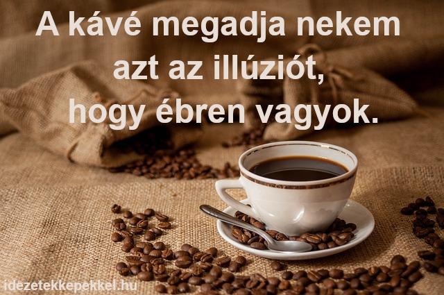 kávé idézet - A kávé megadja nekem azt az illúziót, hogy ébren vagyok.