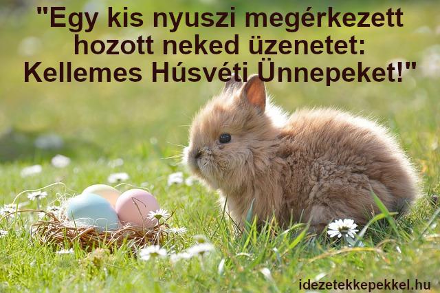 nyuszis húsvéti idézet