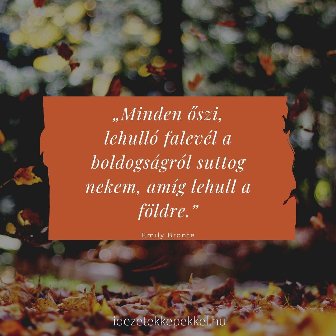 ősz idézet falevél