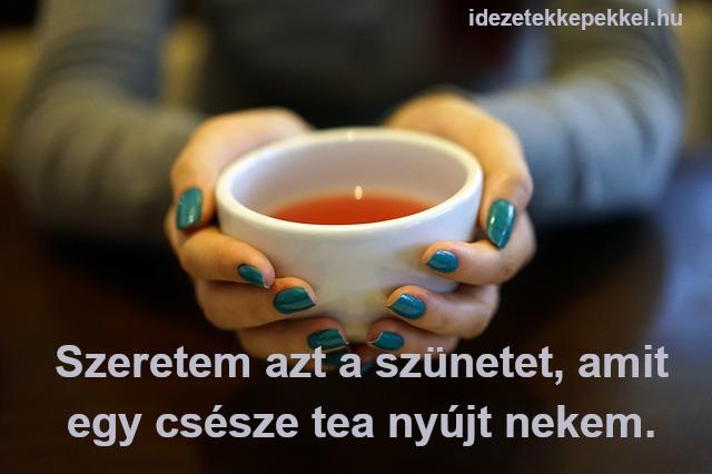 tea idézet - Szeretem azt a szünetet, amit egy csésze tea nyújt nekem.