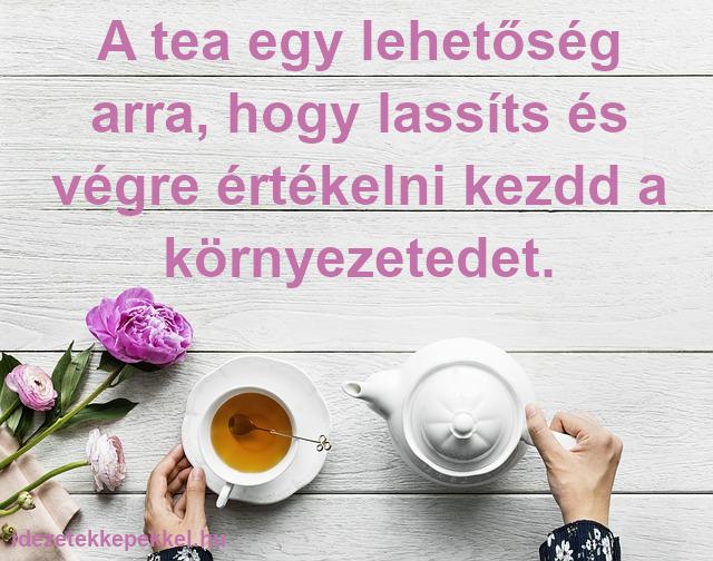tea idézet - A tea egy lehetőség arra, hogy lassíts és végre értékelni kezdd a környezetedet.